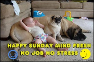 Today Is Sunday - Is This A Day Of Rest For You?