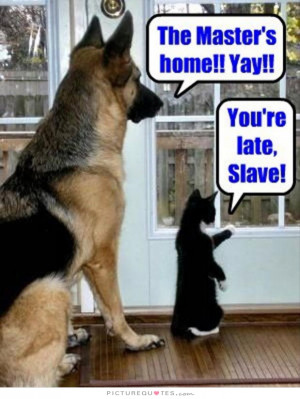 Dog Quotes Cat Quotes Pet Quotes Funny Dog Quotes Slave Quotes Master ...