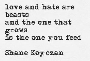 Shane Koyczan: Hate Shane, Feed, Shane Koyczan, Shanekoyczan