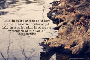 Perception Quotes And Sayings: Only In Quiet Waters Do Things Mirror ...