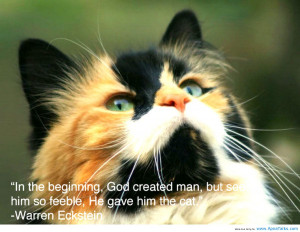 ... The Beginning, God Created Man, But See Him So Feeble - Animal Quote