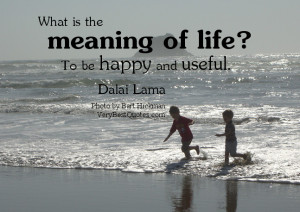 What is the meaning of life? To be happy and useful. H.H. the Dalai ...