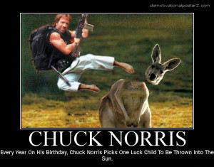Chuck Norris Fact List Poster | ThisNext