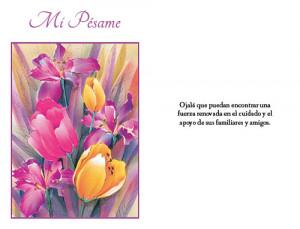 home images spanish sympathy card dozen spanish sympathy card dozen ...