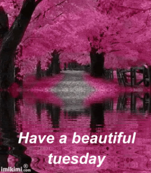... Tuesday Quotes, Beautiful Tuesday, Good Tuesday Morning, Tuesday Quote