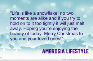 Snowflakes Christmas Quote