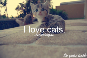 Love Cats Because I Love My Home And After A While They Become Its ...