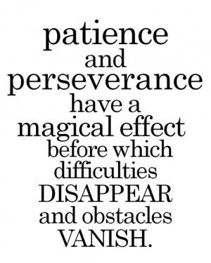 Patience and Perseverance ...
