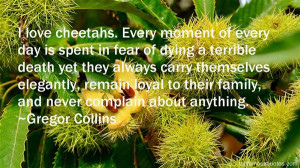 Cheetahs Quotes: best 3 quotes about Cheetahs