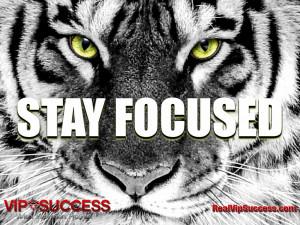 stay-focused-real-vip-success.jpg