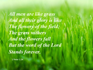 All men are like grass