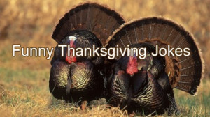 funny thanksgiving jokes jokes thanksgiving jokes there are people who ...