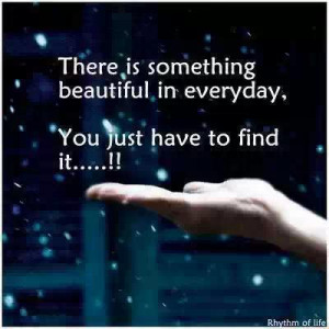 Something Beautiful In Every Day