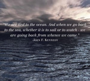 John fitzgerald Kennedy quote.