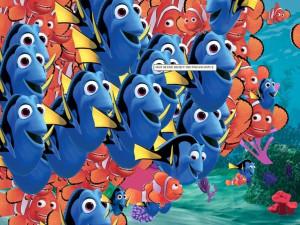 Finding Nemo Starfish Guest...
