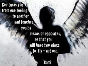 Rumi quote #wings #god #fly