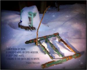 images of cat wisdom 101 pablo neruda poem quote snow grave wallpaper