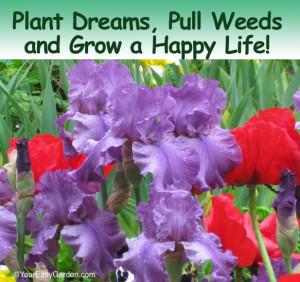 Simple Garden Quotes