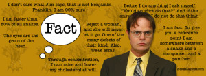 Funny Office Quotes Dwight