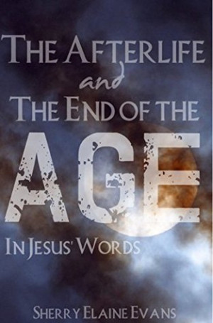The Afterlife and The End of the Age: In Jesus' Words: (14 Days Bible ...