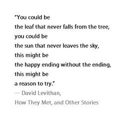 Everyday David Levithan Quotes