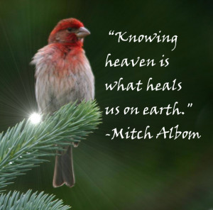 ... is what heals us on earth mitch albom the first phone call from heaven