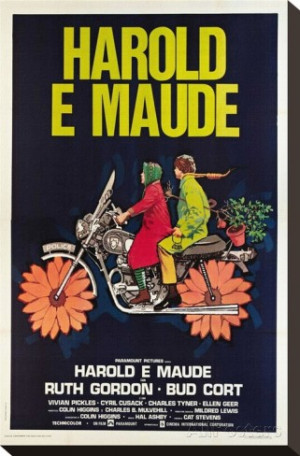 Related Pictures harold and maude screenshots harold and maude photo ...