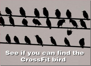 ... fun if we get a good thread of funny or inspirational crossfit related