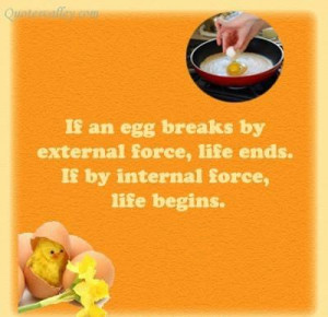 If an egg breaks by external force quote