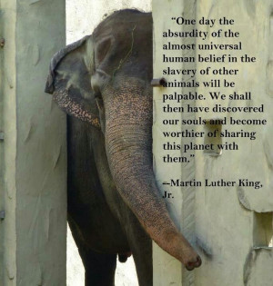 of the almost universal human belief in the slavery of other animals ...