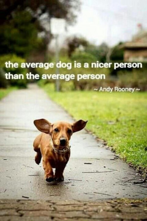 The average dog picture quotes image sayings