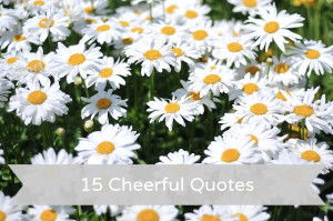 Post image for 15 Cheerful Quotes