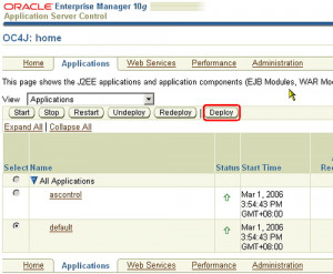 Oracle Application Server (OC4J), BEA Web Logic, JBOSS, and Tomcat