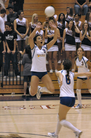 Related Pictures volleyball setter quotes