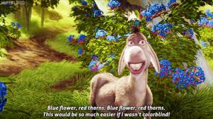 funny shrek quotes | Shrek #Shrek gif #gif #Donkey #Eddie Murphy