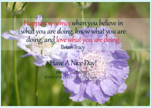 -quotes-love-what-youre-doing-quotes-Have-A-Nice-Day-Quotes-Good ...