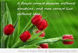 Flower Cannot Blossom Without Sunshine And Man Cannot Live Without ...