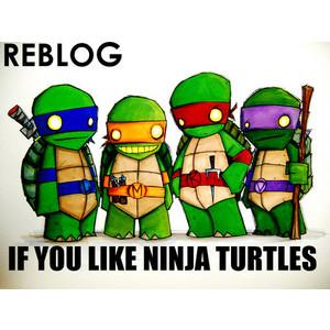 Ninja Turtles!! :D