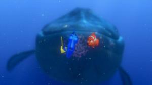 Finding-Nemo-finding-nemo-3568289-853-480.jpg
