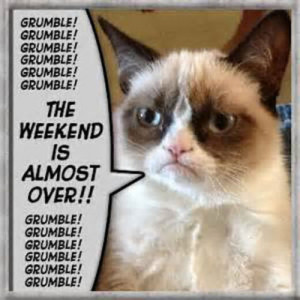 weekend #grumpy cat #weekend quotes #sunday quotes #weekends over