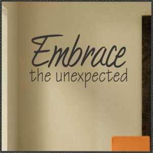 Vinyl Wall Quote Embrace the Unexpected