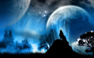 Alpha Coders Wallpaper Abyss Animal Wolf 286604