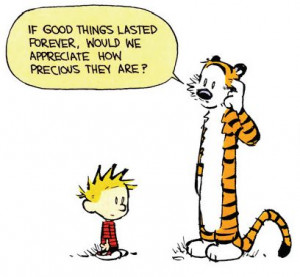 Calvin and Hobbes - If good things lasted forever, would we appreciate ...