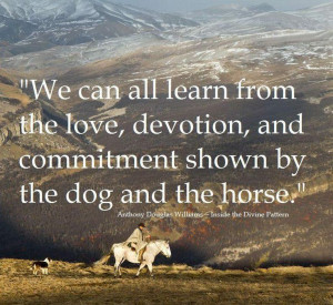 We can all learn from the love, devotion, and commitment shown by the ...