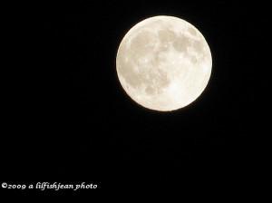 Full Moon Poems
