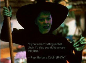 BARABRA CUBIN TO CHALLENGE ALL POLITICAL OPPONENTS TO MUD-WRESTLING ...