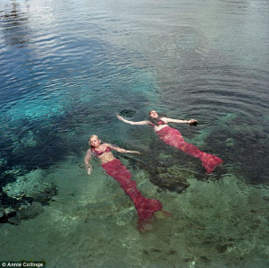Meet the real-life mermaids: Inside the bizarre Florida theme park ...