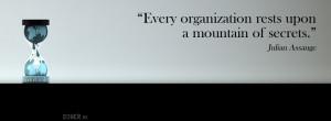 Organization quote #1