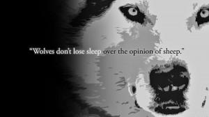 black wolf pack