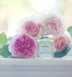 fragrance-chanel-no-5-flower-rose